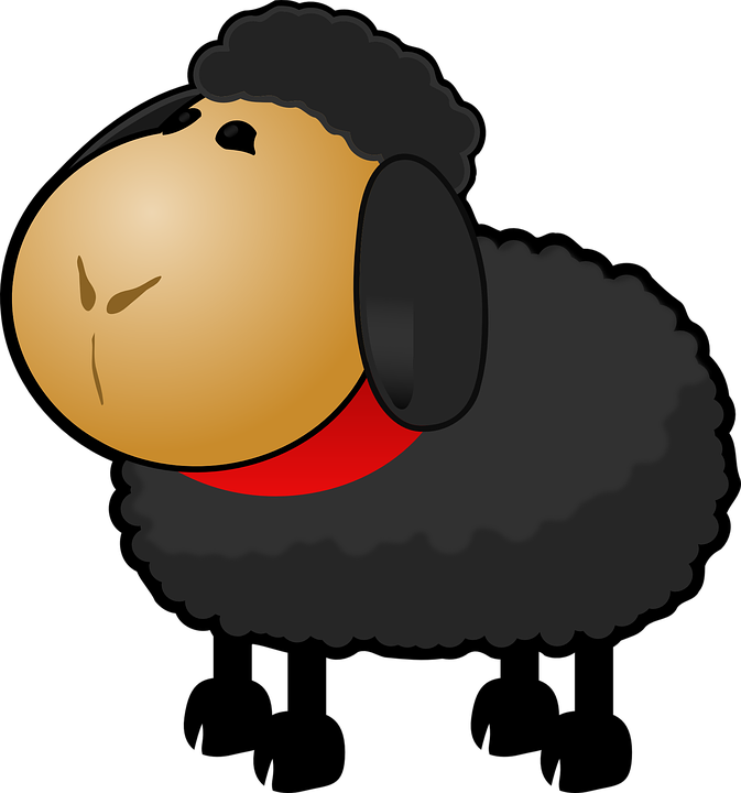black-sheep-147798_960_720